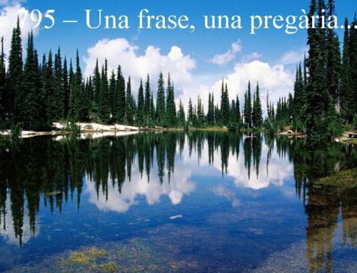 Frase pregària 795