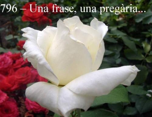 Frase pregària 796